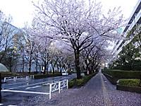 Tachikawa_2a